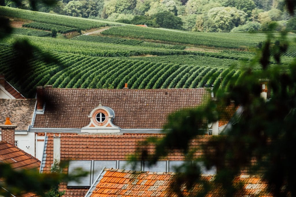Le domaine Canard-Duchêne au cœur des vignobles et de la nature rémoise